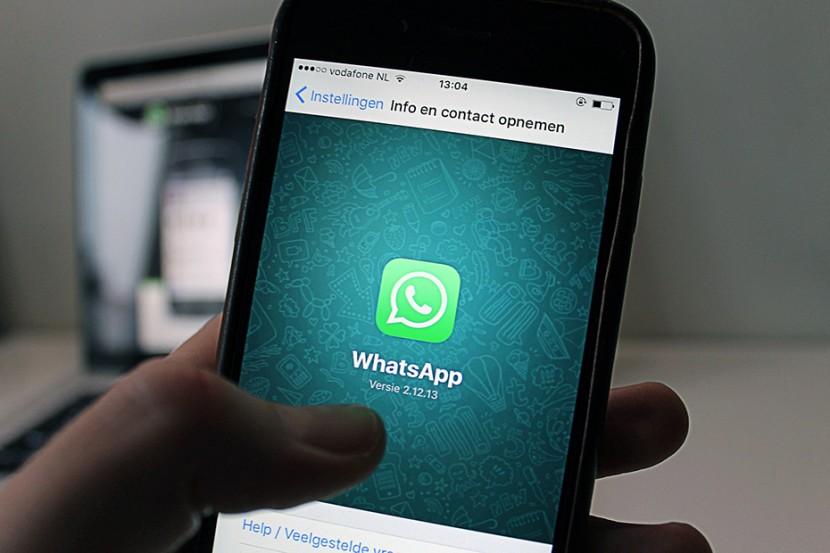 whatsapp acesso livre 2